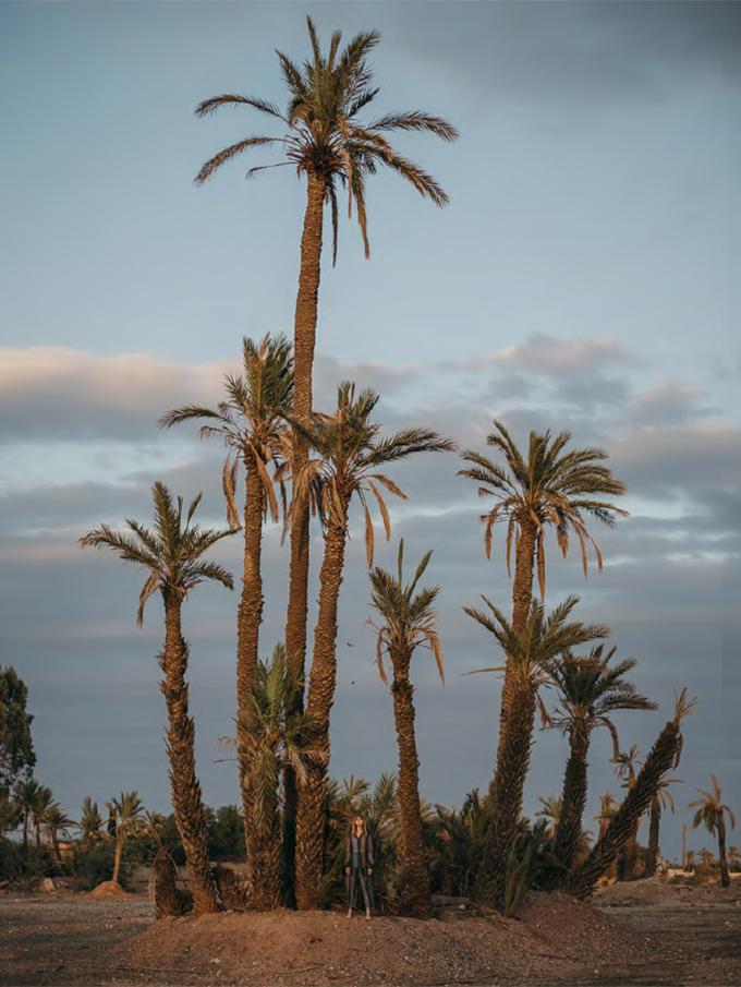 Bedouina