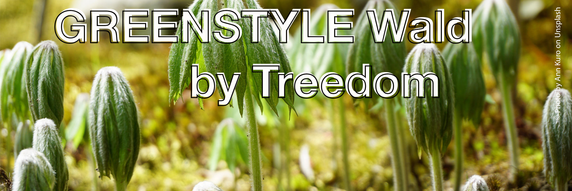 GREENSTYLE Wald – plant now!
