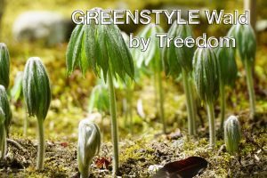 GREENSTYLE Wald